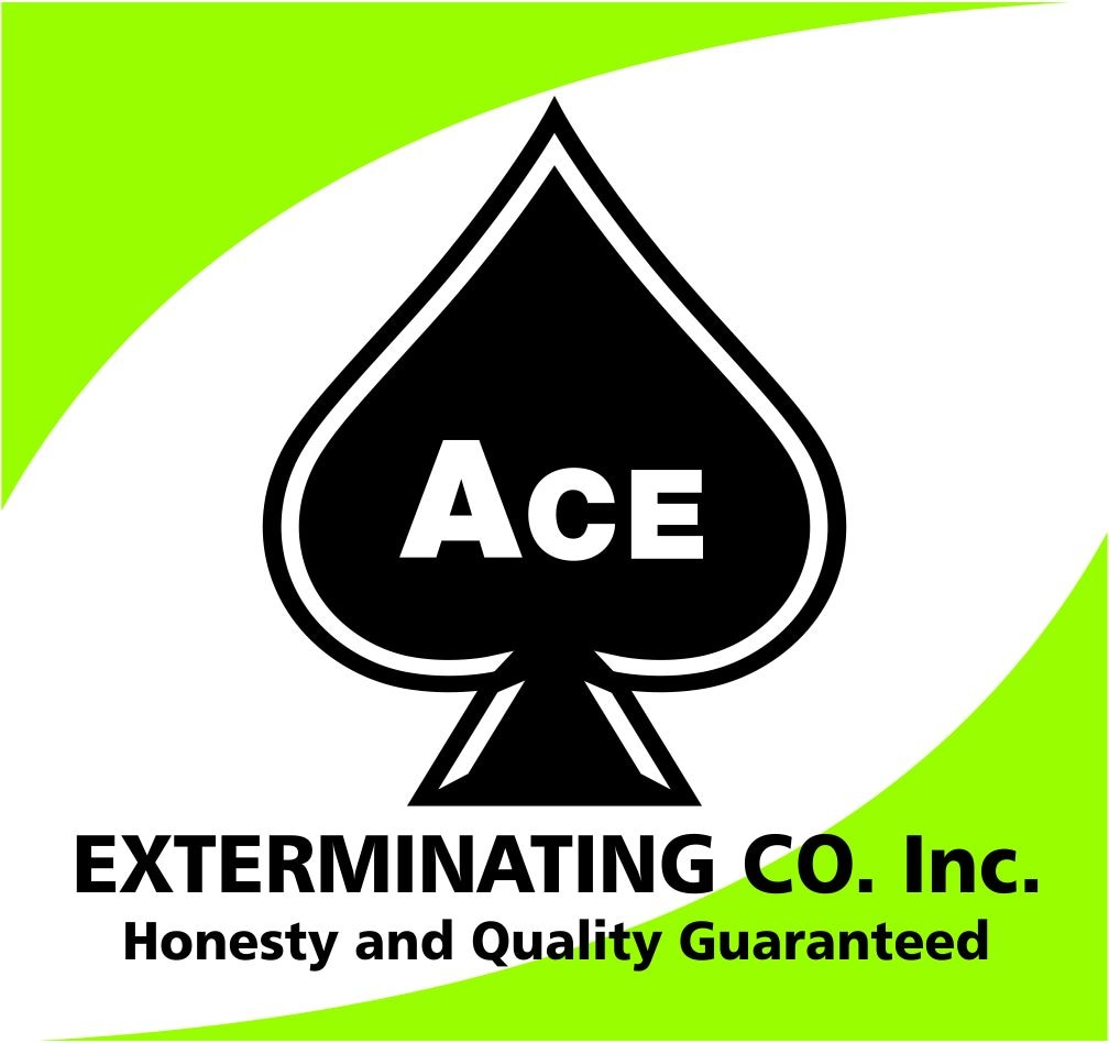 Ace Exterminating Co. Inc.