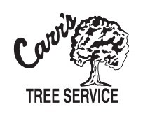 CARR'S TREE SERVICE