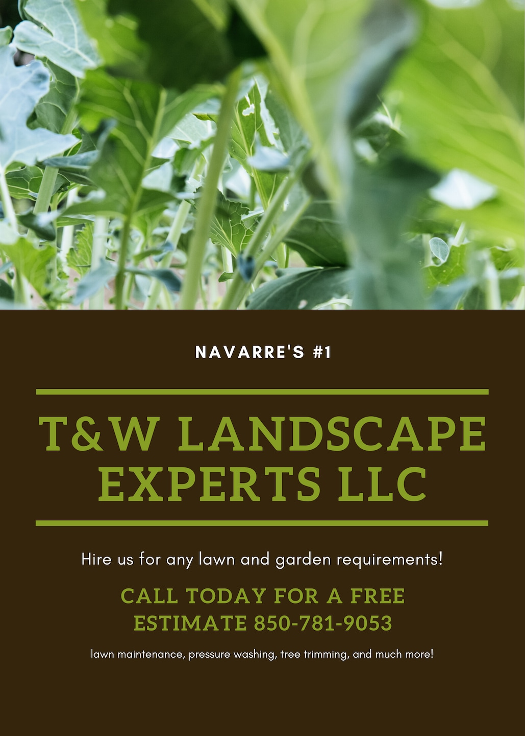 T and W LANDSCAPE EXPERTS
