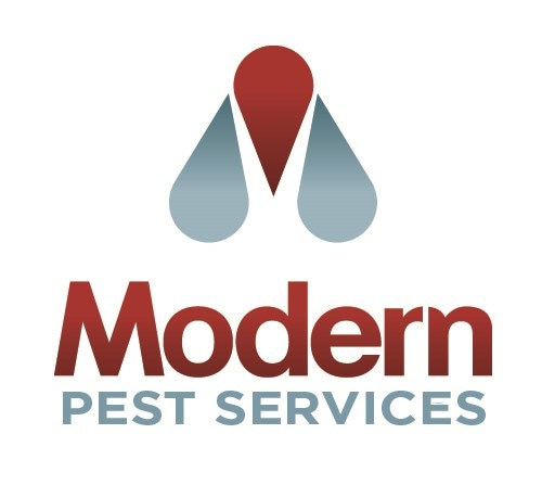 Modern Pest Services - Bangor