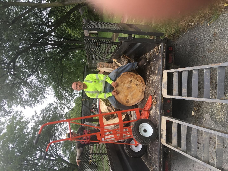 MBI Tree Service