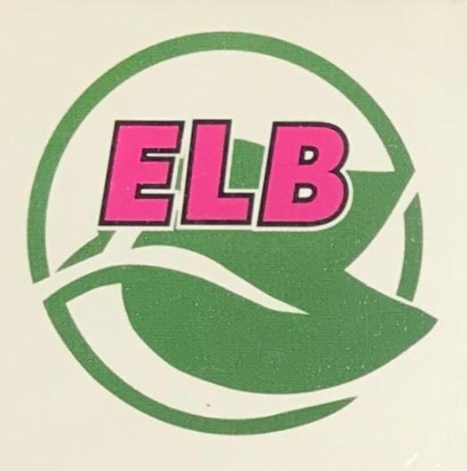 ELB Cleaning Solutions, LLC