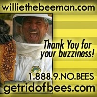 Willie The Bee Man Inc
