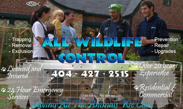 ALL WILDLIFE CONTROL
