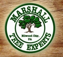 Marshall Tree Experts logo