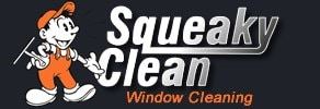 Squeaky Clean Window Cleaning
