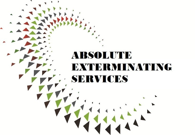 Absolute Exterminating Services