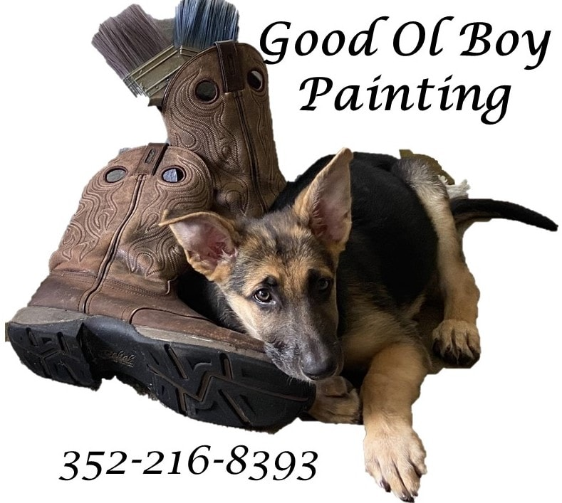 Good Ol Boy Painting