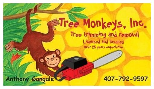 Tree Monkeys, Inc.