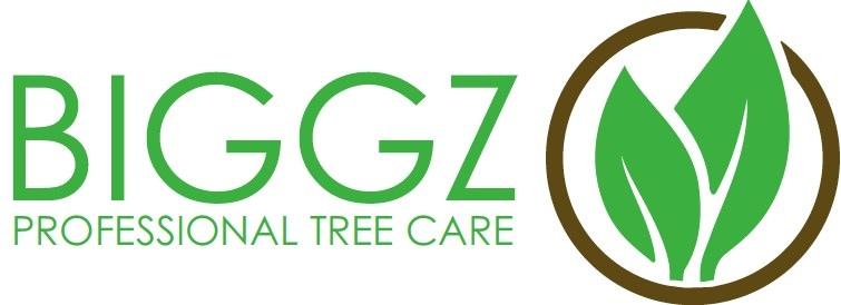 Biggz Professional Tree Care LLC