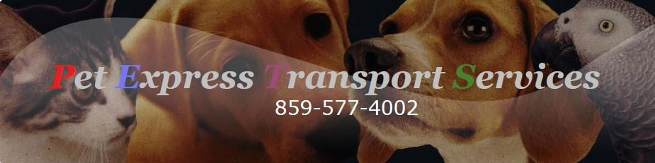 Pet Express Transport Service LLC