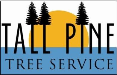 Tall Pine Tree Service
