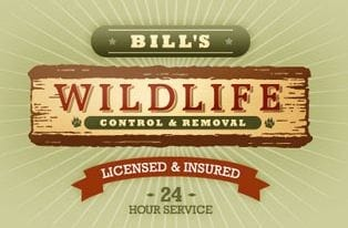 Bill's Wildlife Control & Removal