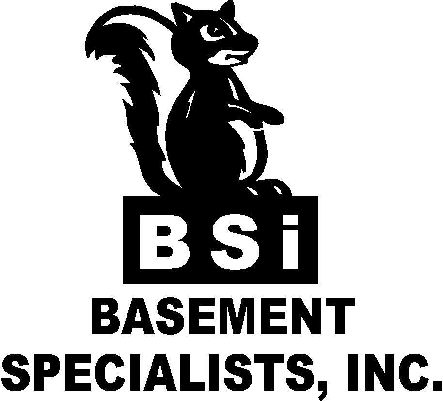 BASEMENT SPECIALISTS INC