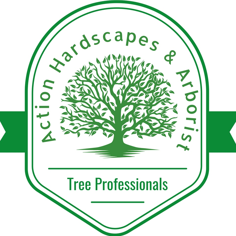 Action Hardscapes & Arborist