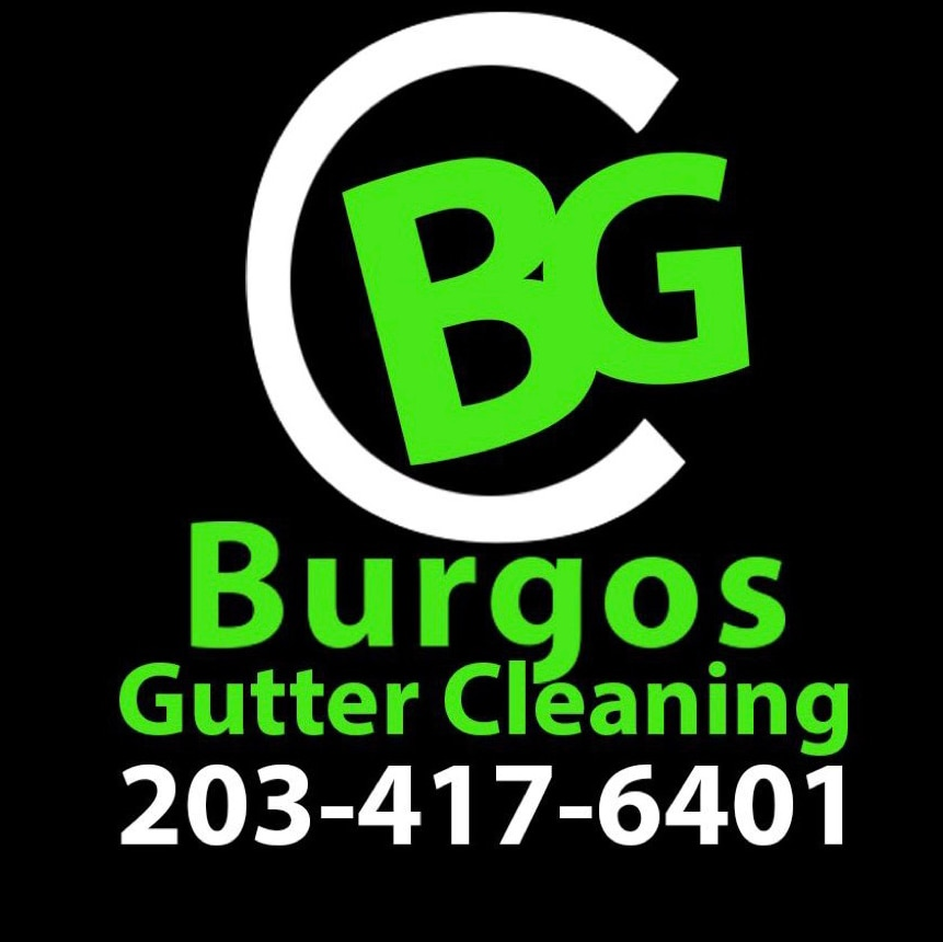 Burgos Gutter Cleaning and Installation