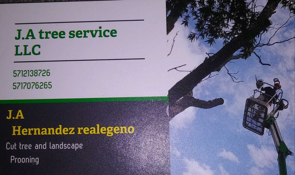 JA Tree Service