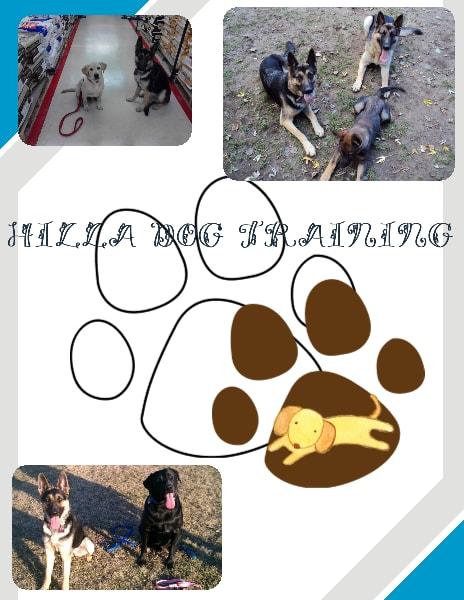 Hilla Dog Training