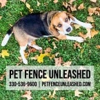 Pet Fence Unleashed