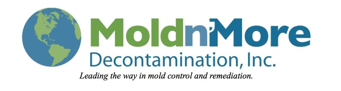 MOLD 'N MORE DECONTAMINATION