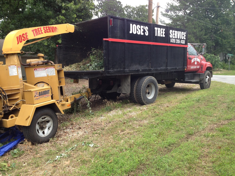 Jose's Tree Service