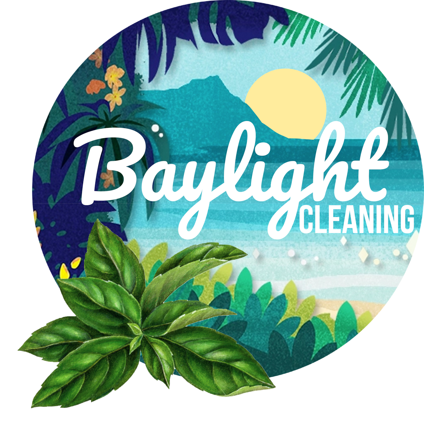 Baylight Carpet Cleaning