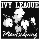 Ivy League Plantscaping