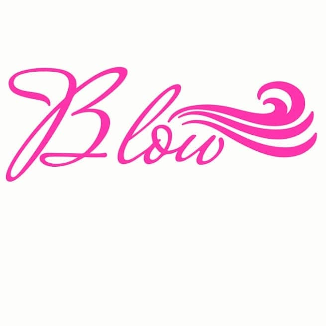 Blow LLC