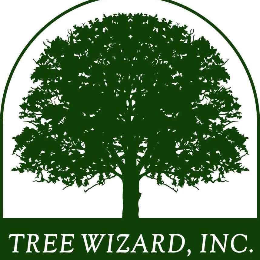 Tree Wizard