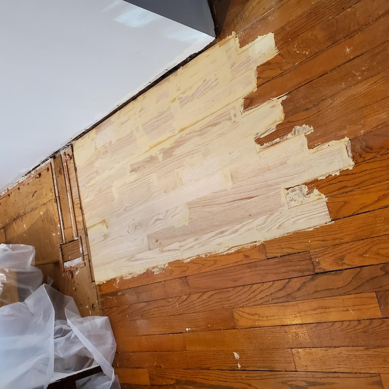 Javier Ruiz Hardwood Flooring and Painting