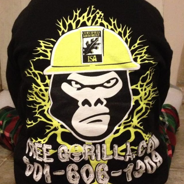 Chad Bryants Tree Care/ The Tree Gorilla