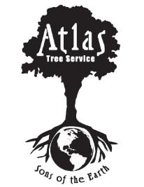 Atlas Trees