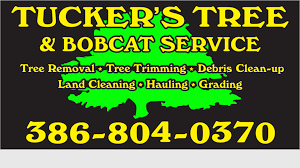 TUCKER'S TREE & BOBCAT SERVICE