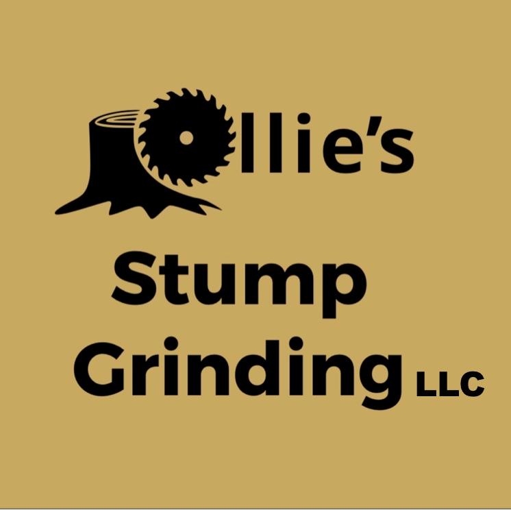 Ollies Stump Grinding