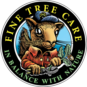 Fine Tree Care