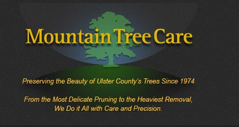 MOUNTAIN TREE CARE