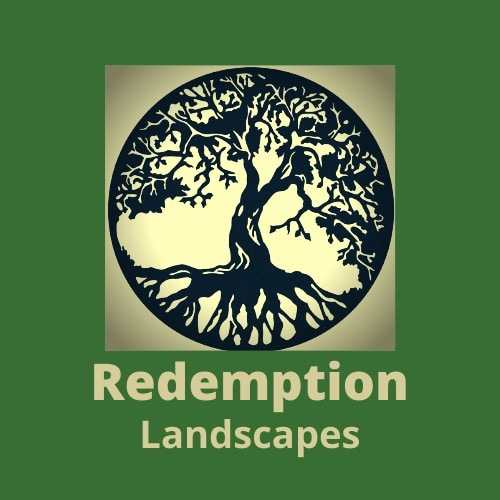 Redemption Landscapes