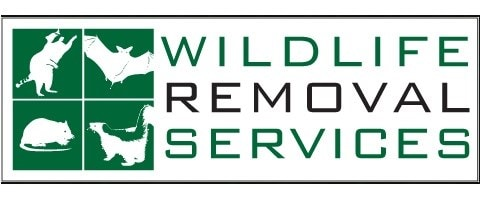 Wildlife Removal Services Inc