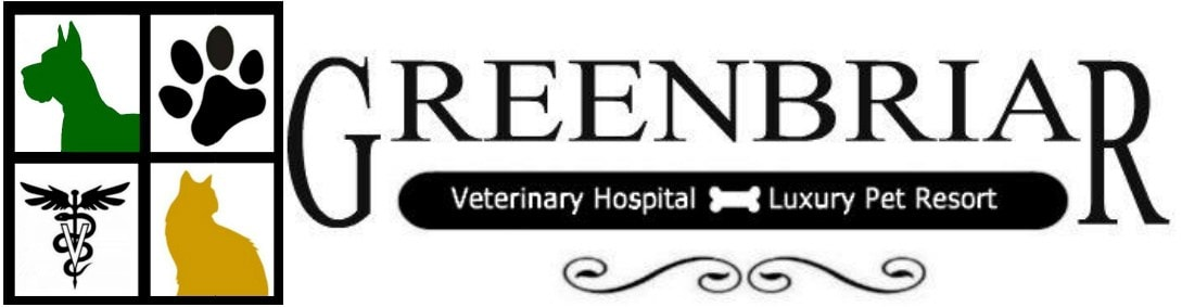 Greenbriar Veterinary Hospital & Luxury Pet Resort