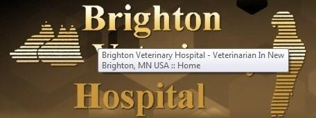 Brighton Veterinary Hospital