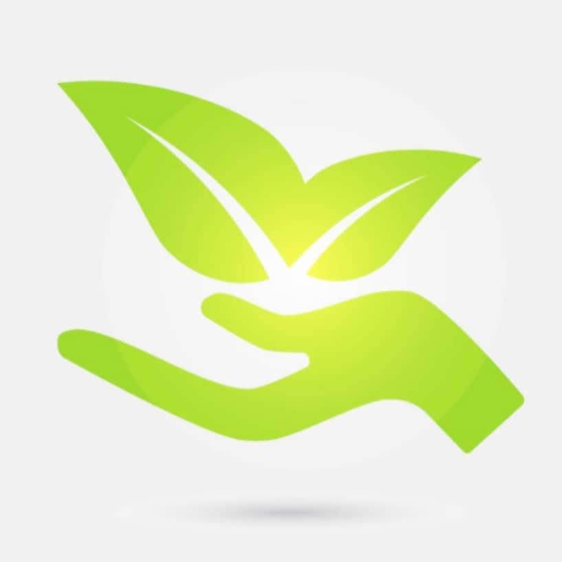 Greenhand Lawn Management