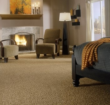 Eddie and Sons Carpet and Upholstery