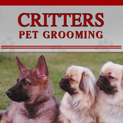 Critters Pet Grooming