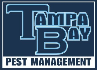 Tampa Bay Pest Management