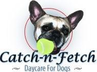 CATCH-N-FETCH