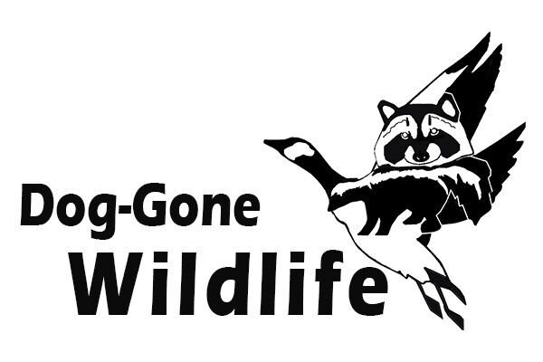 Dog-Gone Wildlife