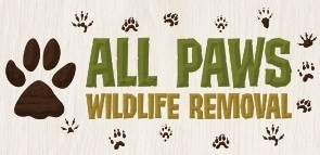 All Paws Wildlife Removal LLC