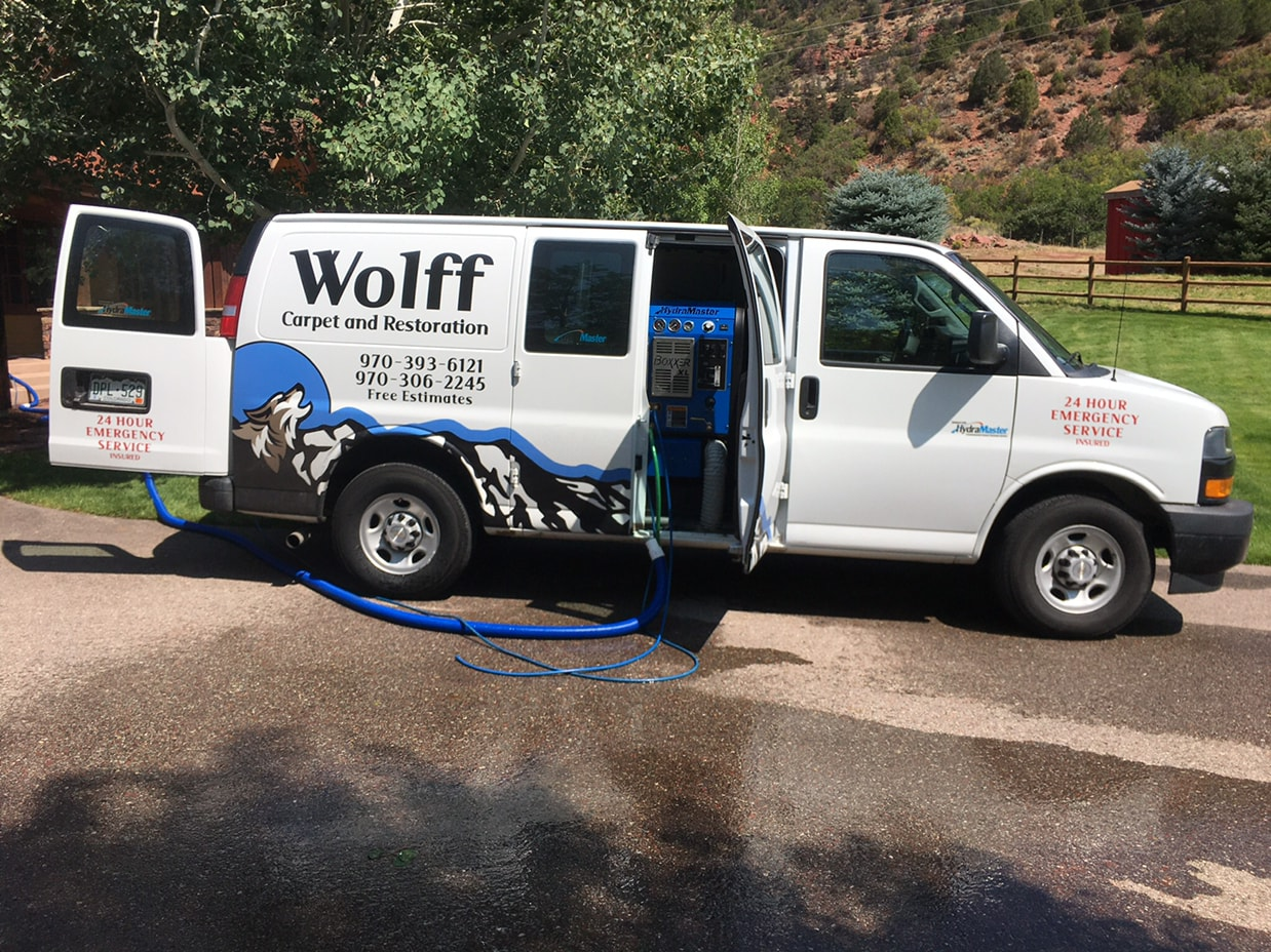 Wolf carpet cleaning and restoration
