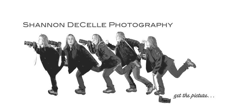Shannon DeCelle Photography