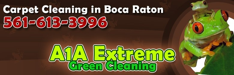 A1A Extreme Green Cleaning Inc